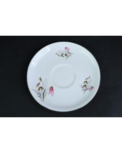Royal Duchess Fine China Floral Leaves Saucer Plate W/Silver Rim Bavaria Germany