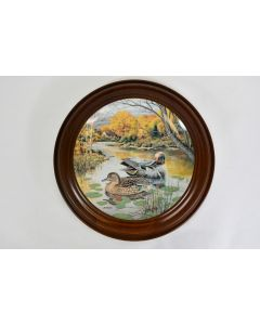 Vintage Knowles 1987 Framed The Green-Winged Teal Decor Plate 16051E W/Hanger